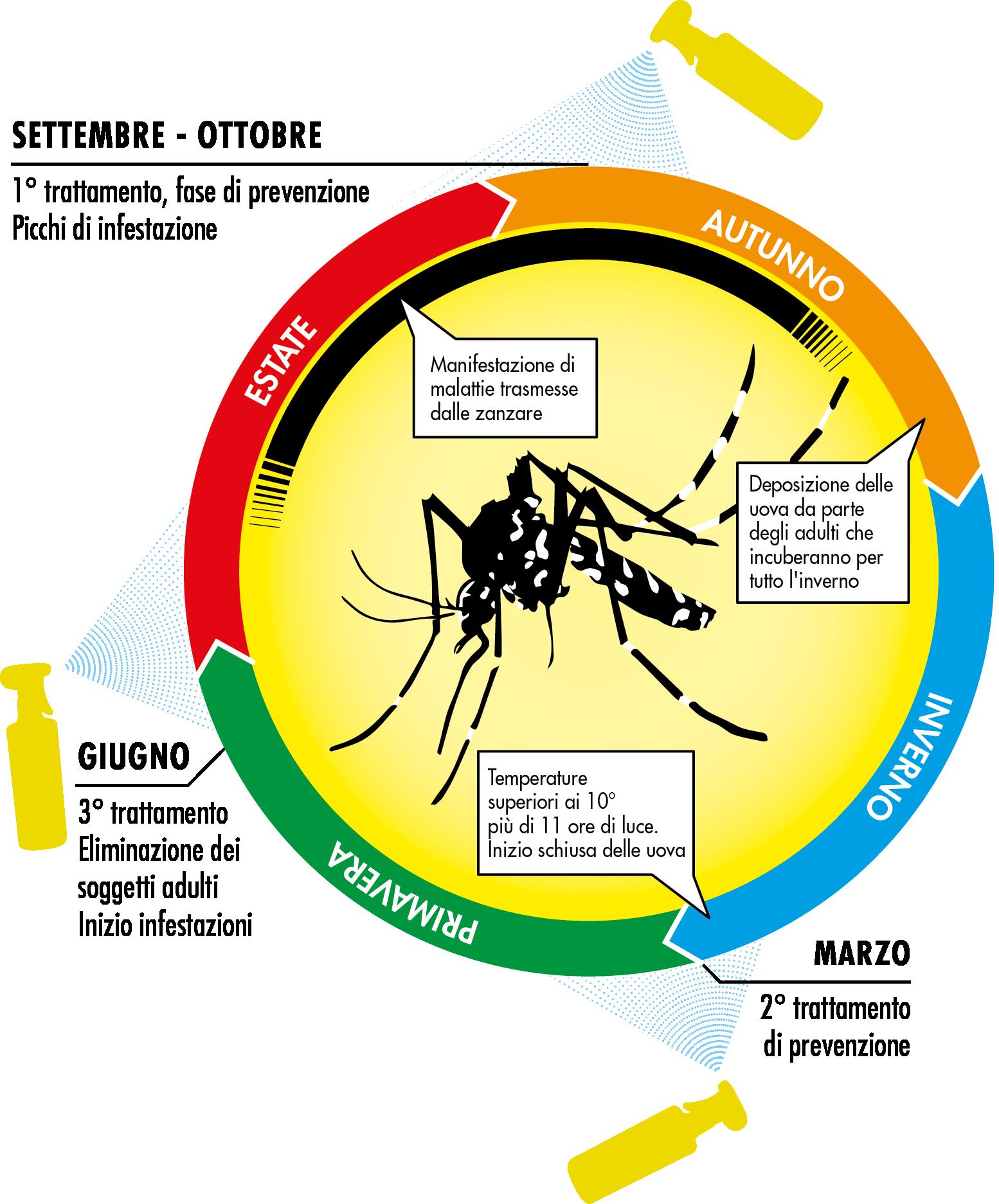 Zanzara Tigre - Calendario del ciclo di prevenzione
