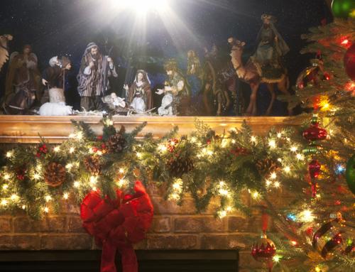 L'attesa del Natale senza spiacevoli sorprese – come evitare infestazioni tra gli addobbi